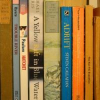 Adrift in Books