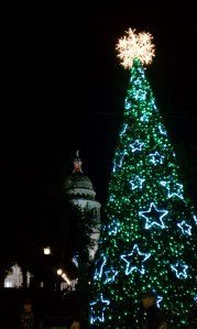 xmastree_edited-1